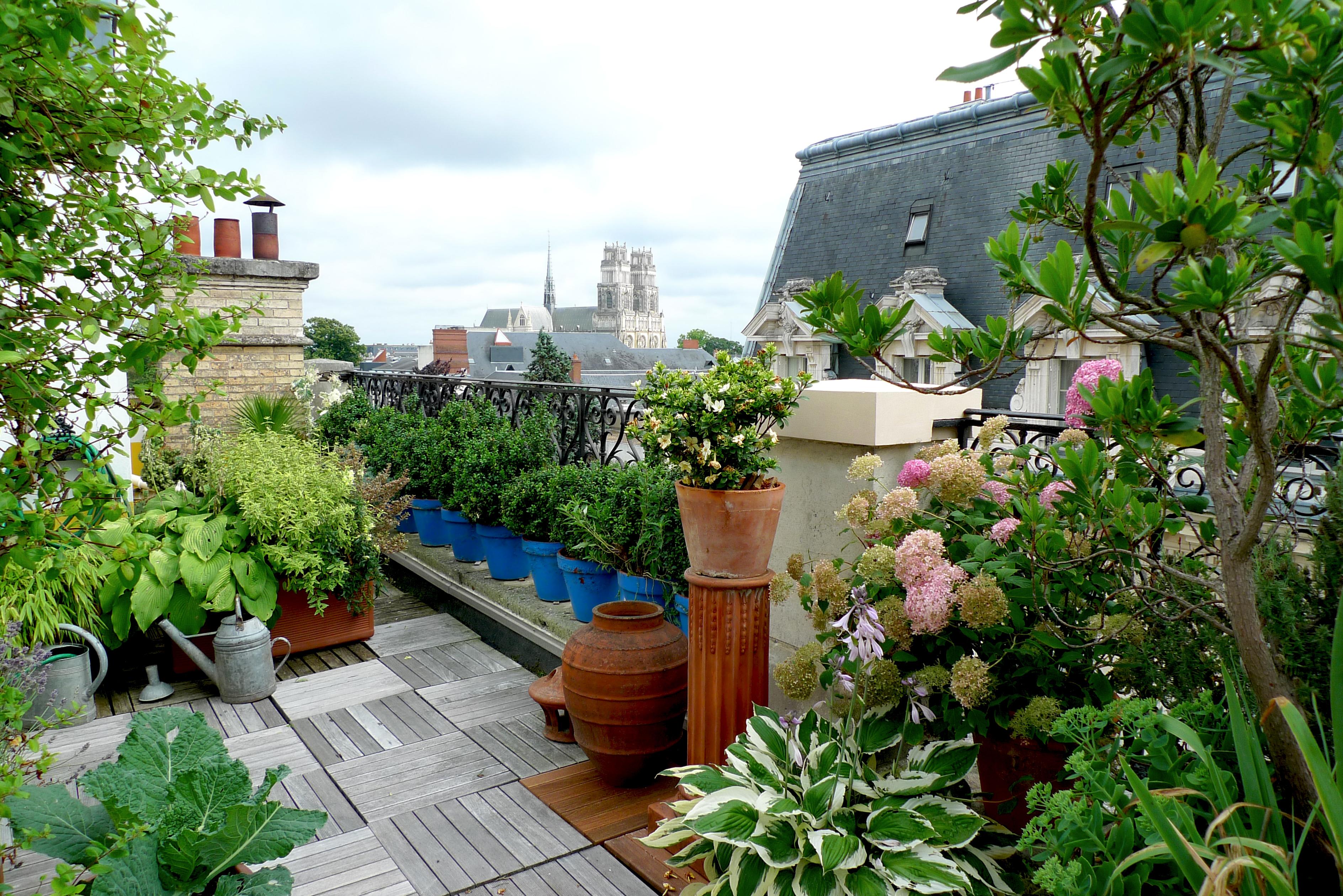 Comment Amenager Un Jardin En Ville