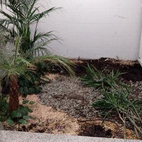 Entretien jardin de grande surface